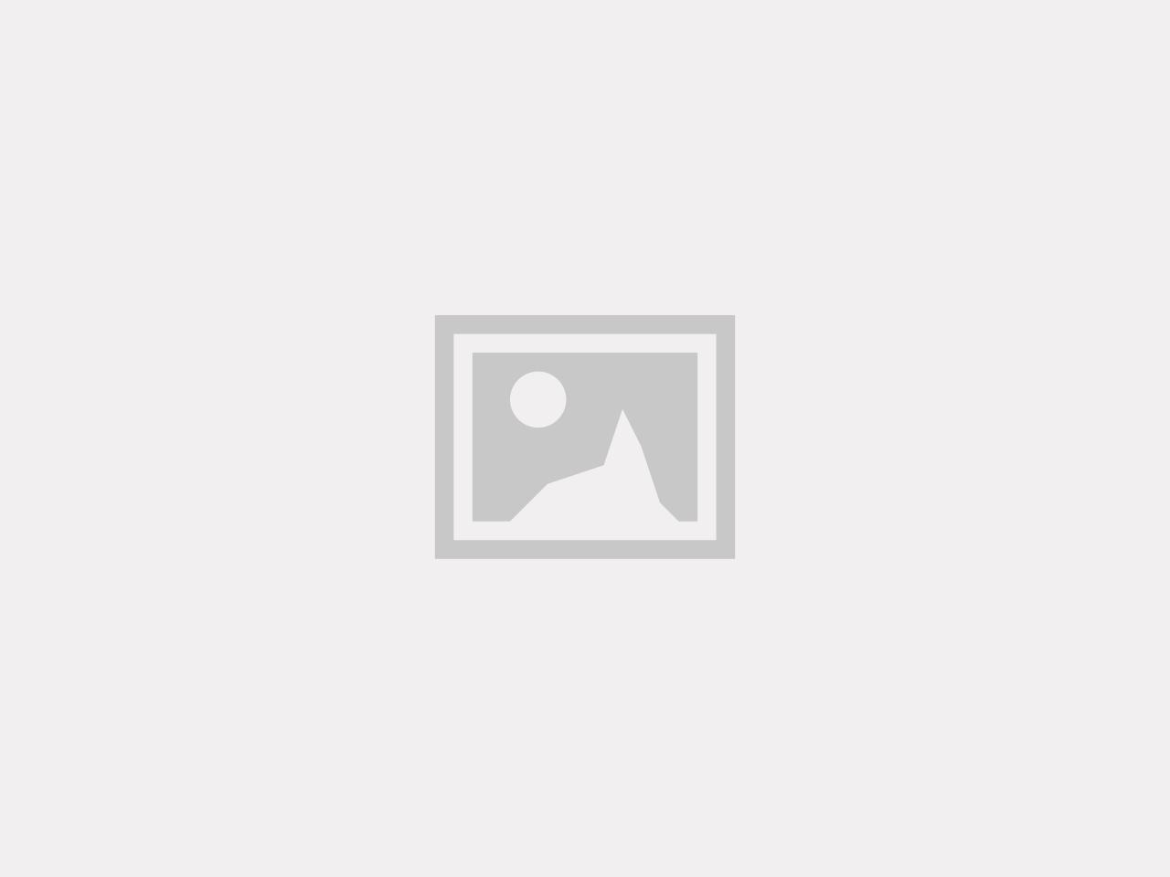 Scrunchie - Storblommig
